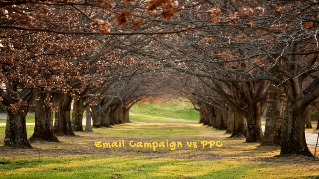 Email Campaign vs PPC